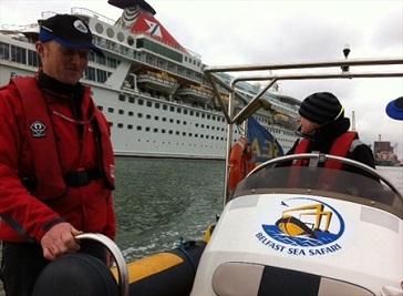 Belfast Sea Safari Boat Trip and cruise ship COMBO!