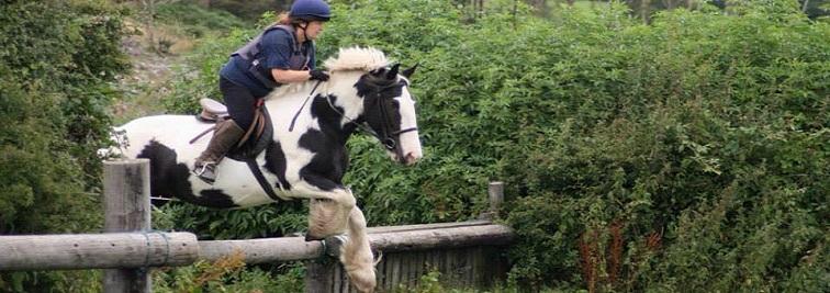 Birr House Riding Center